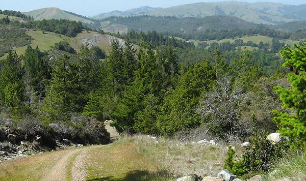 Fairfax, Mountain Biking Mecca